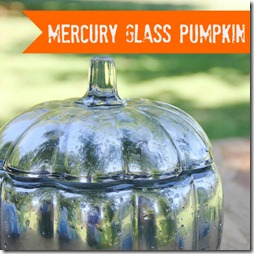 mercury_glass_pumpkin_project_how_to_directions (2) thumbnail 2